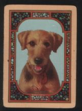 Antique Wide named playing cards. Airedale dogs
